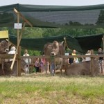 Festa Parco dei Colli